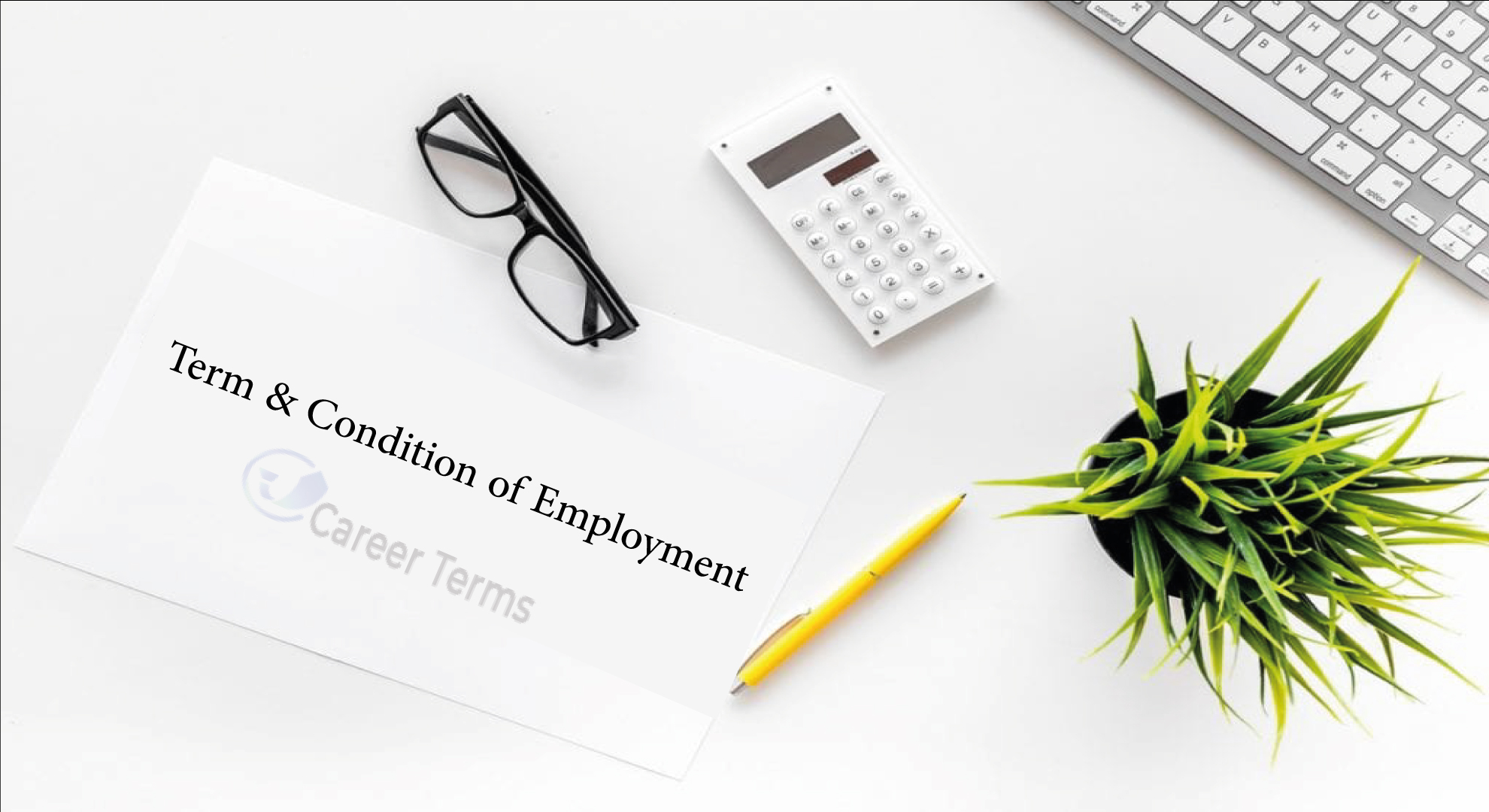 examine-the-importance-of-terms-and-conditions-of-employment